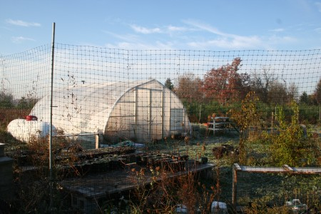 greenhouse and yard